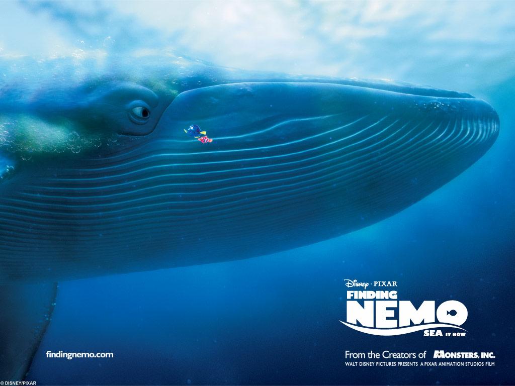 Wallpaper de la catégorie : Le monde de Nemo