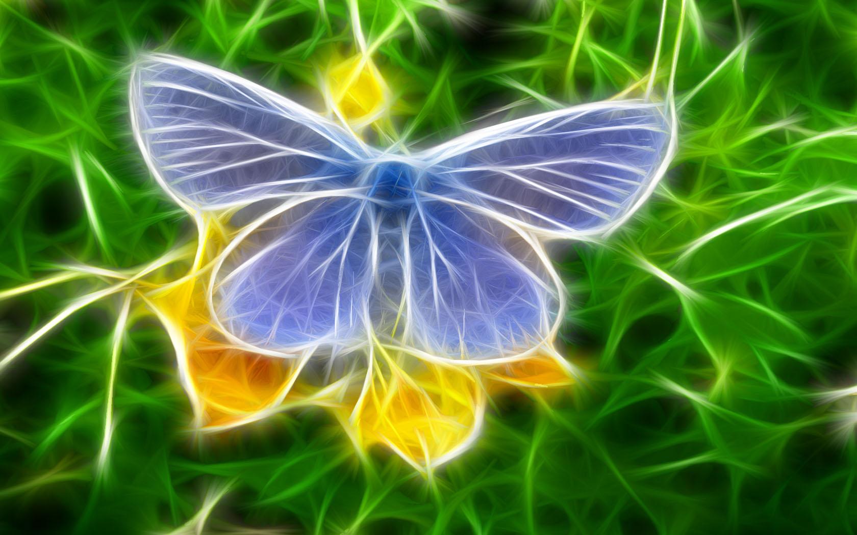 Fond d'ecran Papillon bleu Dessin - Wallpaper