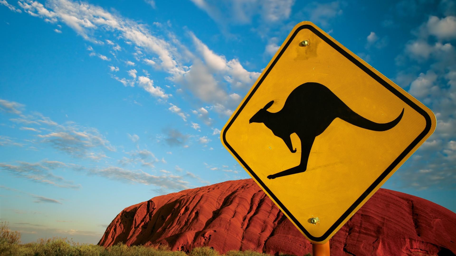 http://www.wallfizz.com/art-design/animal/5674-kangourou-panneau-WallFizz.jpg