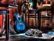 Guitare et chat