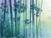 Bambous nature