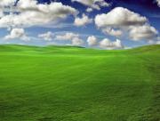 Nuage et herbe