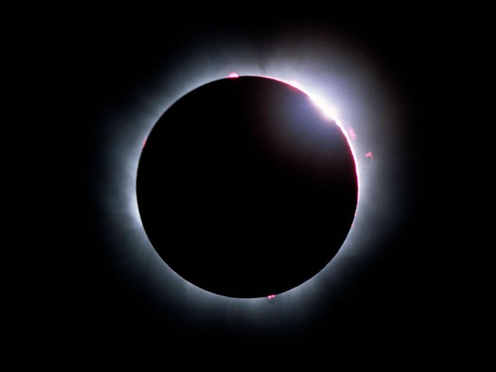Actualité > Les premières images de l'éclipse de Lune