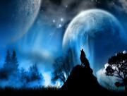 Loup planètes