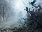Corbeaux ténèbres