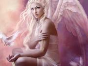 Ange colombe