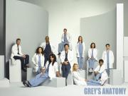 Les personnages de Grey's anatomy