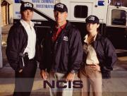 NCIS Gibs Todd Dinozzo