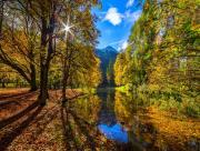 Forêt et cours d'eau