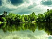 Lac verdure