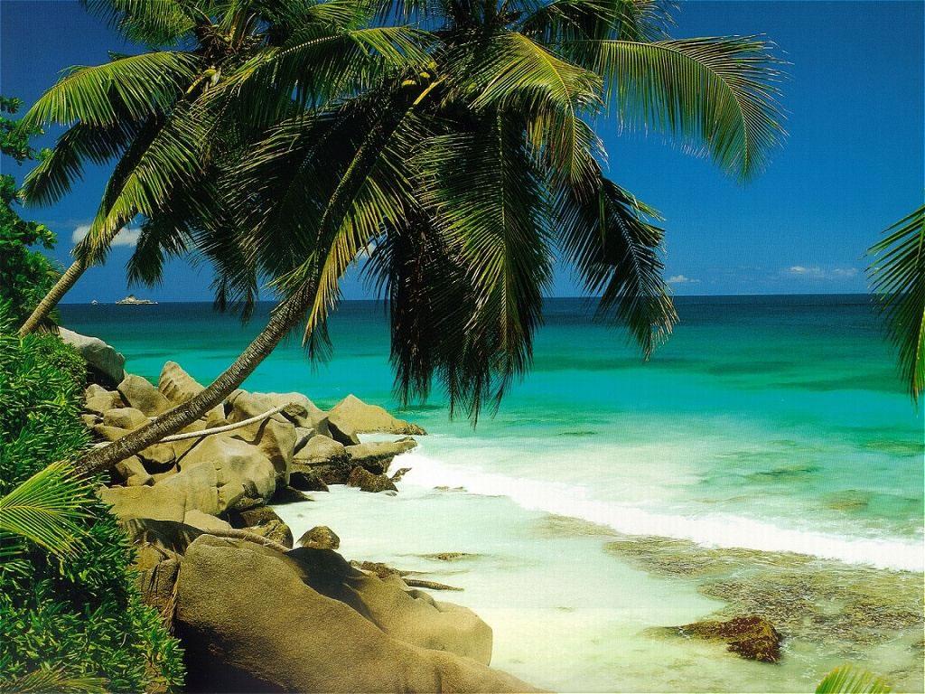 Fond d 39 ecran paysage plage wallpaper for Fond ecran plage gratuit
