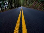 Route des bois